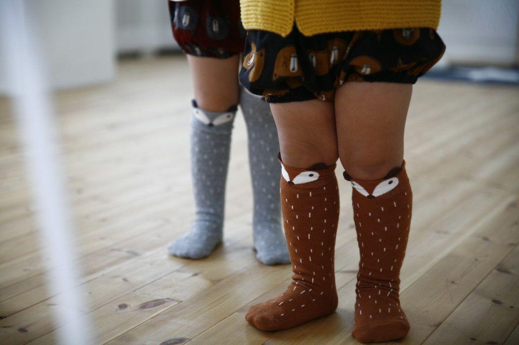 Calcetines zorro zorrito racoon sockscomprar online tienda niños gijon jo mami kids